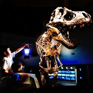 DinoSleepover