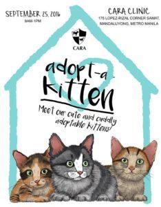 adopt-a-kitten