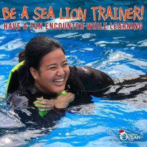 sea-lion-trainer